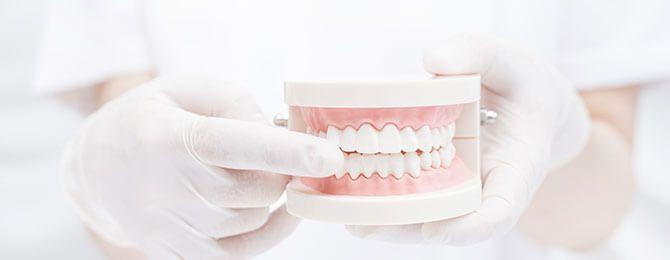 入れ歯とお口のお悩み解決